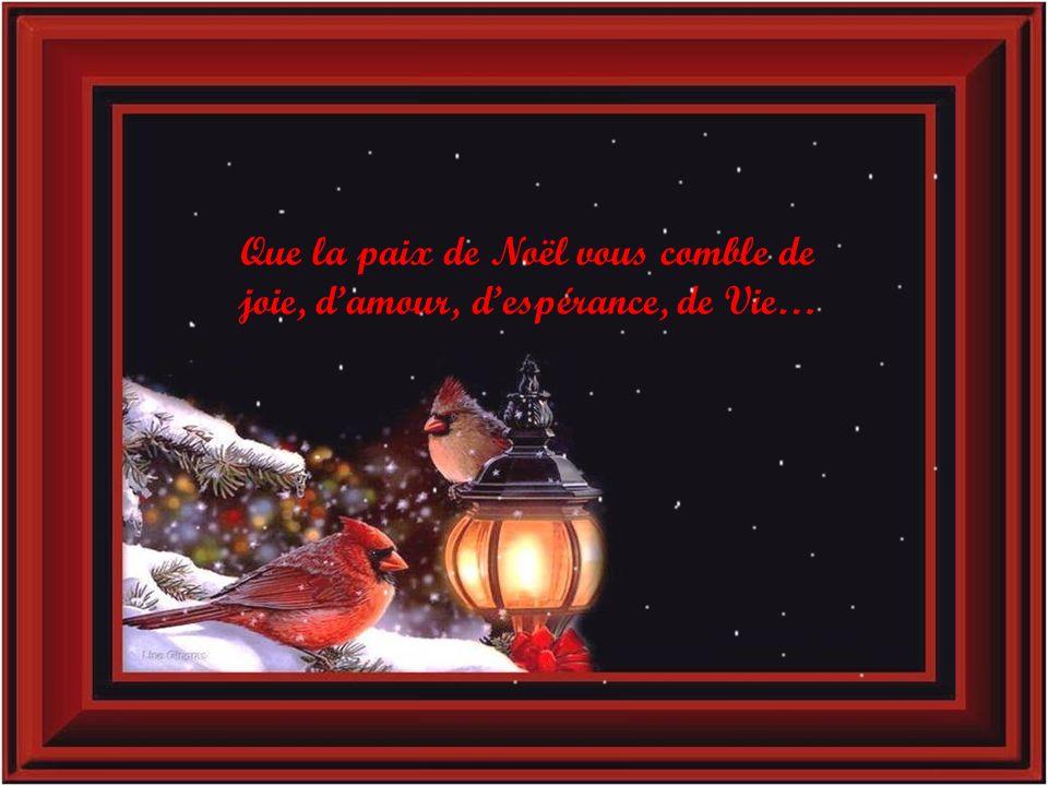 Bildergebnis für Meilleurs voeux pour Noel images