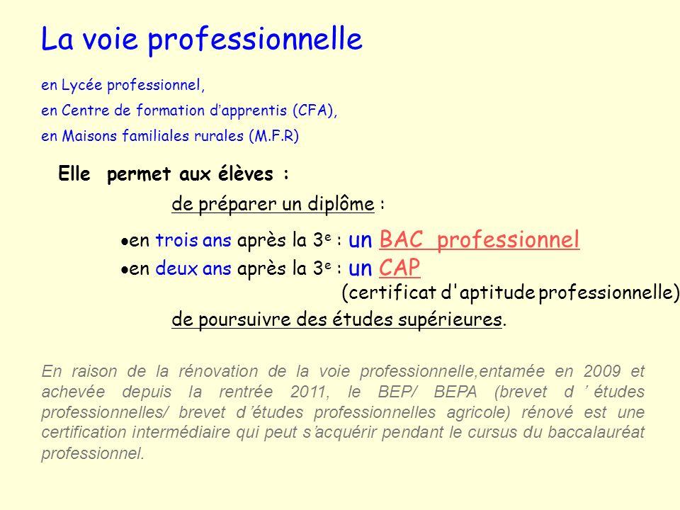 La voie professionnelle en Lycée professionnel, en Centre de formation dapprentis (CFA), en Maisons familiales rurales (M.F.R) Elle permet aux élèves