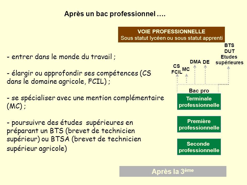 DE DMA CS FCIL MC Après la 3 ème VOIE PROFESSIONNELLE Sous statut lycéen ou sous statut apprenti Seconde professionnelle Terminale professionnelle Pre