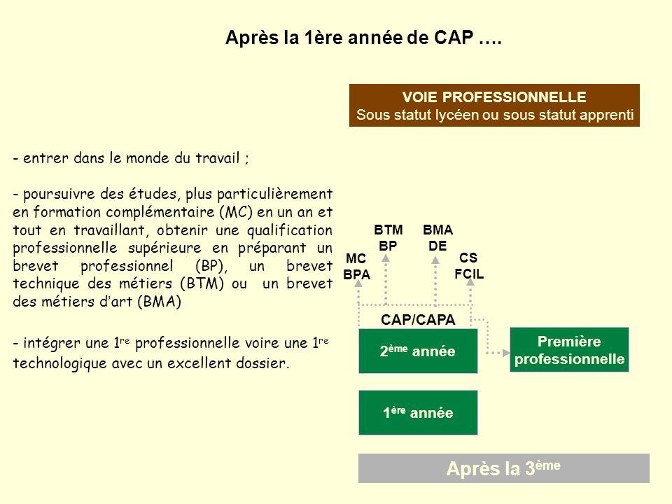 Après la 3 ème VOIE PROFESSIONNELLE Sous statut lycéen ou sous statut apprenti CAP/CAPA 2 ème année 1 ère année Après la 1ère année de CAP …. - entrer