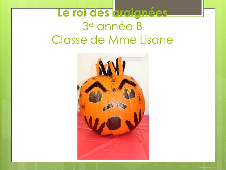 Le roi des araignées 3 e année B Classe de Mme Lisane