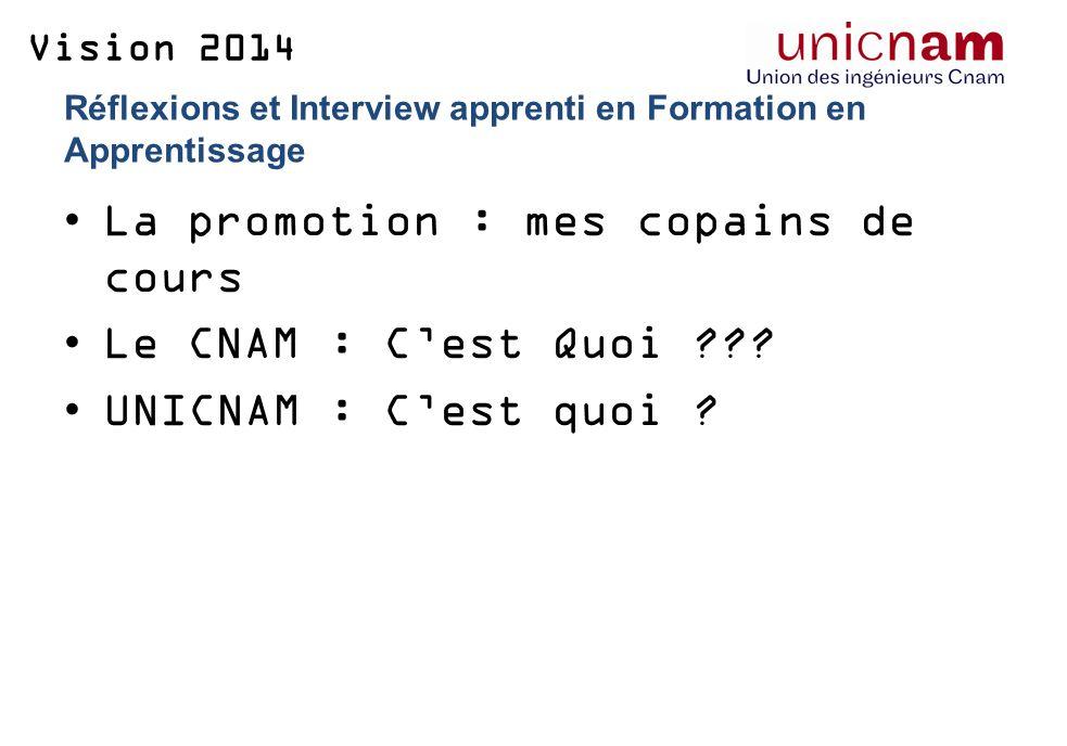 Vision 2014 Réflexions et Interview apprenti en Formation en Apprentissage La promotion : mes copains de cours Le CNAM : Cest Quoi .