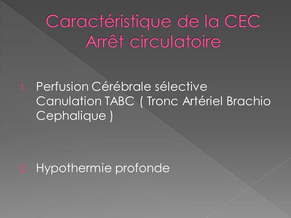 1. Perfusion Cérébrale sélective Canulation TABC ( Tronc Artériel Brachio Cephalique ) 2. Hypothermie profonde