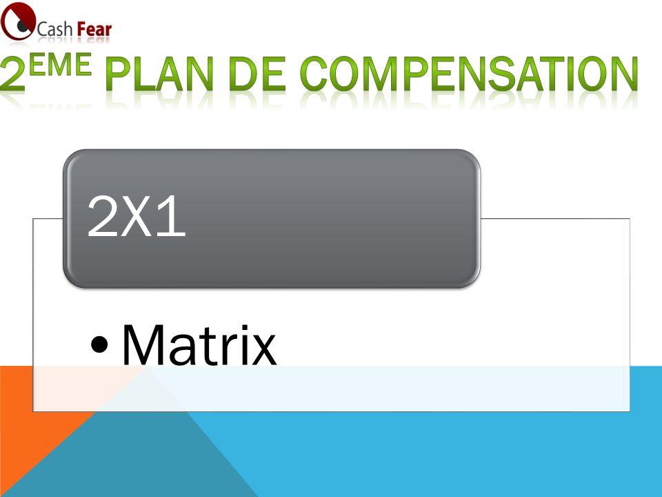 Matrix 2X1