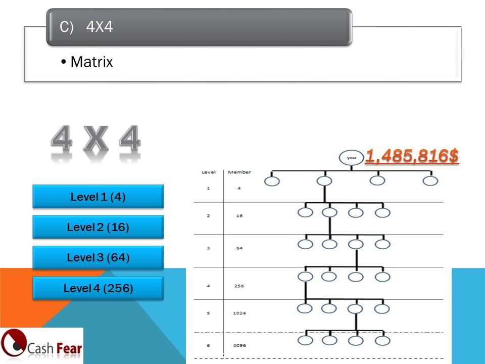 Matrix C) 4X4 Level 1 (4) Level 2 (16) Level 3 (64) Level 4 (256)