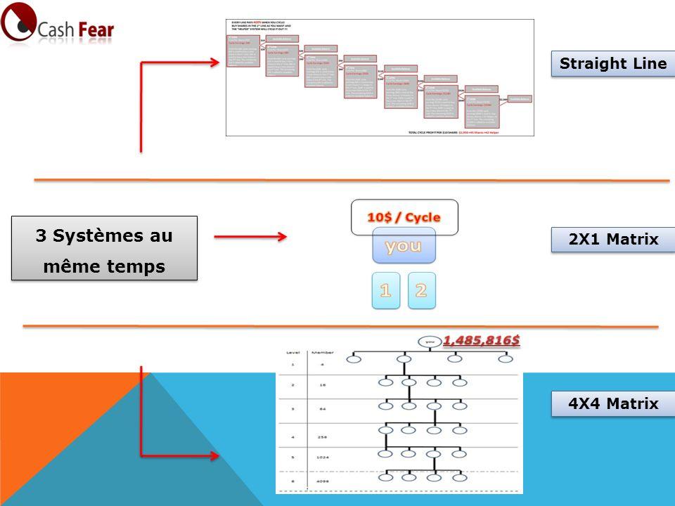 2X1 Matrix Straight Line 3 Systèmes au même temps 4X4 Matrix