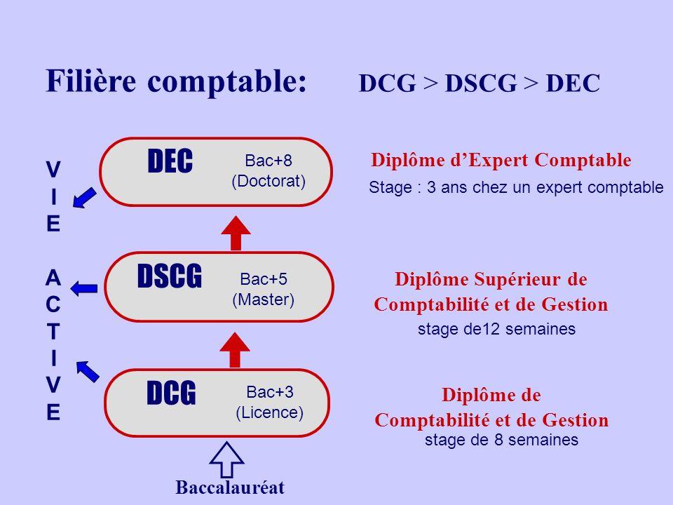 Filière comptable: DCG > DSCG > DEC DSCG DEC Stage : 3 ans chez un expert comptable stage de12 semaines DCG Diplôme dExpert Comptable Diplôme Supérieur de Comptabilité et de Gestion o o o Bac+8 (Doctorat) Bac+5 (Master) Bac+3 (Licence) Baccalauréat stage de 8 semaines Diplôme de Comptabilité et de Gestion VIE ACTIVEVIE ACTIVE