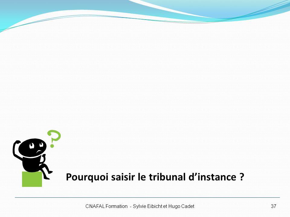 CNAFAL Formation - Sylvie Eibicht et Hugo Cadet37 Pourquoi saisir le tribunal dinstance ?