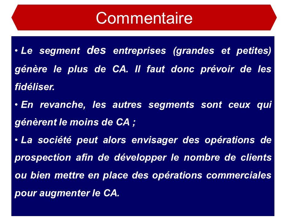 Commentaire Le segment des entreprises (grandes et petites) génère le plus de CA. Il faut donc prévoir de les fidéliser. En revanche, les autres segme