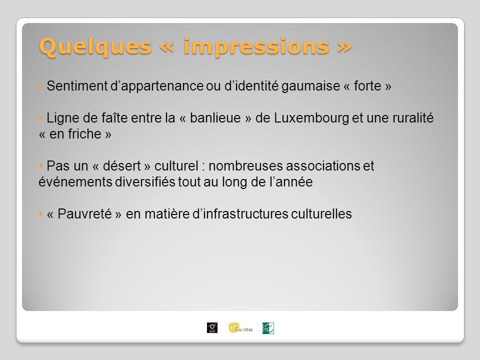 Quelques « impressions » Sentiment dappartenance ou didentité gaumaise « forte » Ligne de faîte entre la « banlieue » de Luxembourg et une ruralité « en friche » Pas un « désert » culturel : nombreuses associations et événements diversifiés tout au long de lannée « Pauvreté » en matière dinfrastructures culturelles