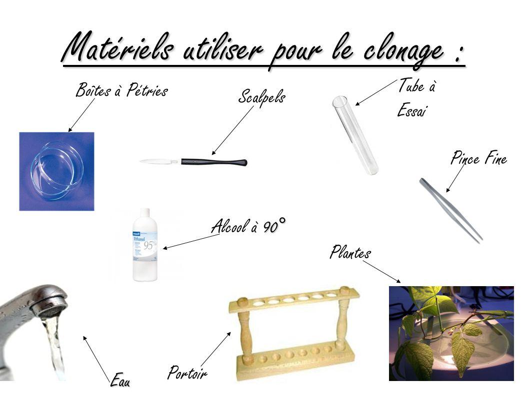 Matériels utiliser pour le clonage : Scalpels Tube à Essai Eau Plantes Portoir Boîtes à Pétries Pince Fine 90° Alcool à 90°