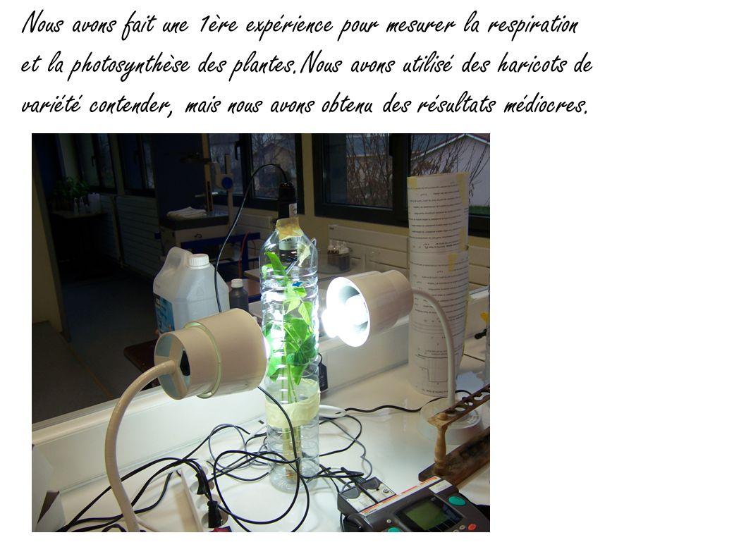Nous avons fait une 1ère expérience pour mesurer la respiration et la photosynthèse des plantes.Nous avons utilisé des haricots de variété contender,