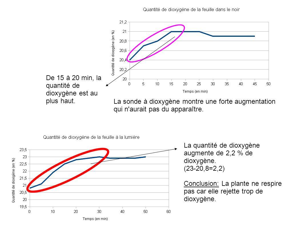 De 15 à 20 min, la quantité de dioxygène est au plus haut. La quantité de dioxygène augmente de 2,2 % de dioxygène. (23-20,8=2,2) Conclusion: La plant