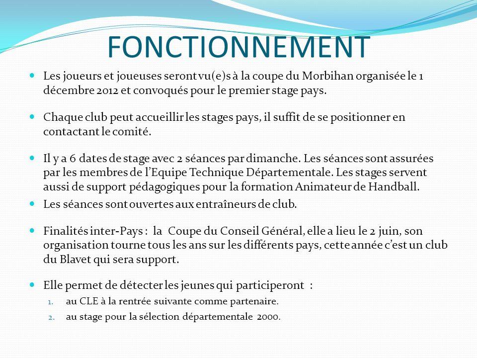 FONCTIONNEMENT Les joueurs et joueuses seront vu(e)s à la coupe du Morbihan organisée le 1 décembre 2012 et convoqués pour le premier stage pays. Chaq