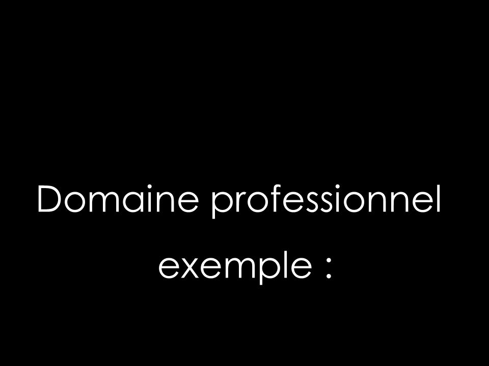 Domaine professionnel exemple :