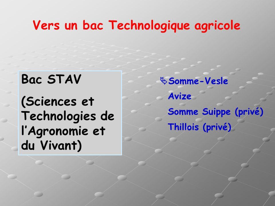 Vers un bac Technologique agricole Bac STAV (Sciences et Technologies de lAgronomie et du Vivant) Somme-Vesle Avize Somme Suippe (privé) Thillois (pri
