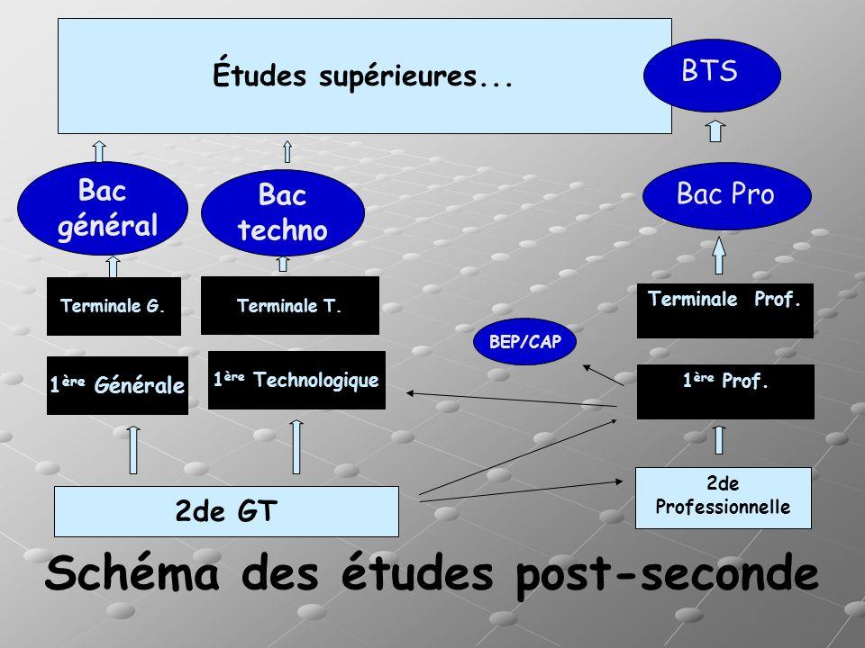 Schéma des études post-seconde 2de GT 1 ère Générale 1 ère Technologique Terminale G. Terminale T. Bac général Bac techno BEP/CAP Études supérieures..