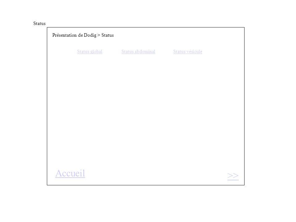 Status >> Présentation de Dodig > Status Status globalStatus abdominal Status vésicule Accueil