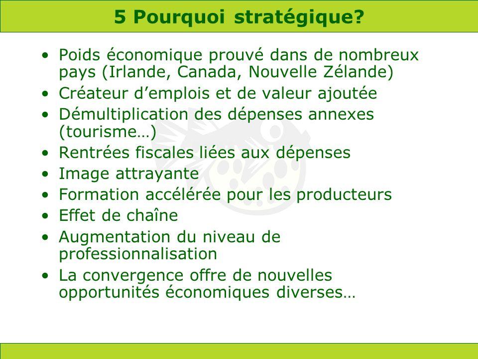 5 Pourquoi stratégique? Poids économique prouvé dans de nombreux pays (Irlande, Canada, Nouvelle Zélande) Créateur demplois et de valeur ajoutée Démul