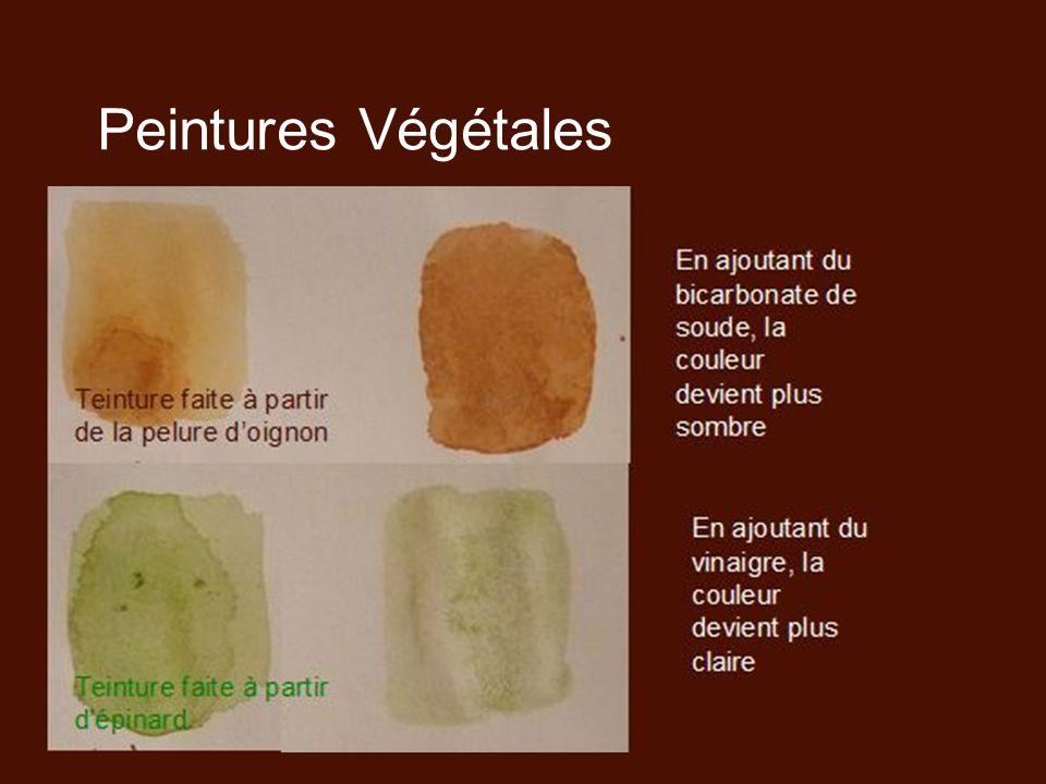 Peintures Végétales Teinture faite à partir de la pelure doignon