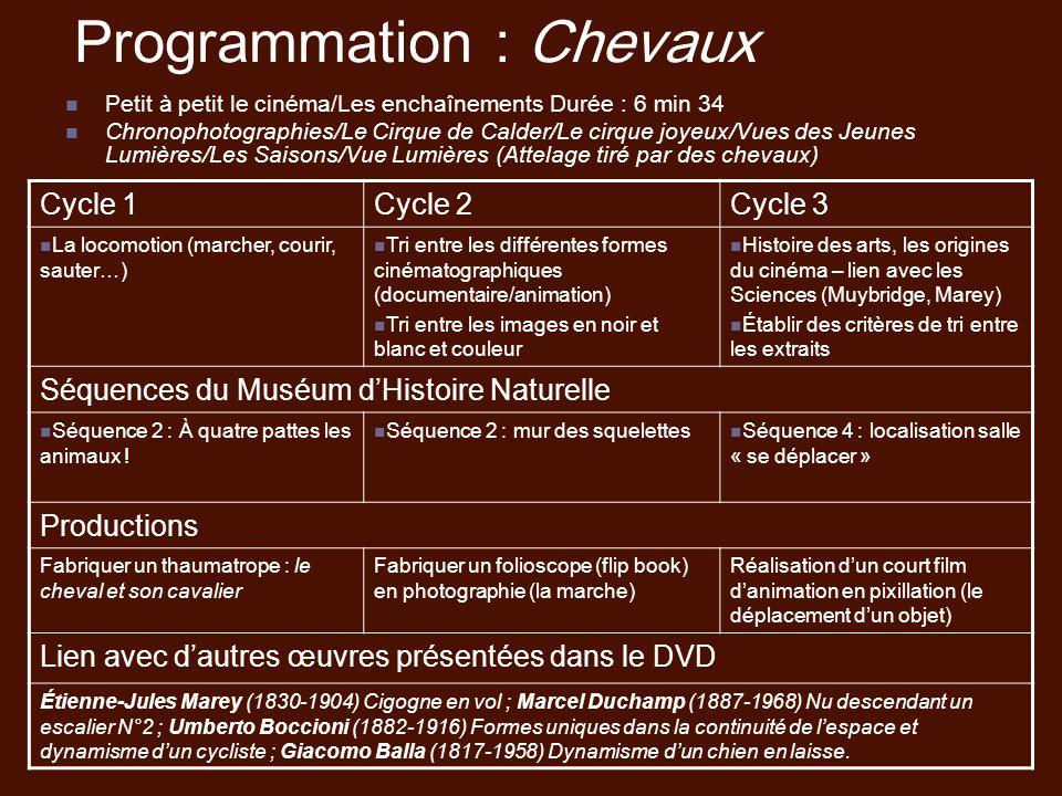 Programmation : Chevaux Petit à petit le cinéma/Les enchaînements Durée : 6 min 34 Chronophotographies/Le Cirque de Calder/Le cirque joyeux/Vues des J
