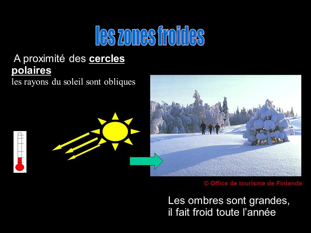 A proximité des cercles polaires les rayons du soleil sont obliques Les ombres sont grandes, il fait froid toute lannée © Office de tourisme de Finlande