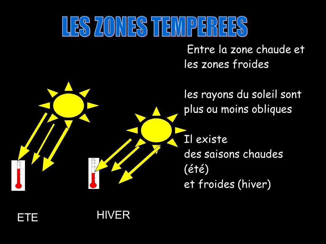 Entre la zone chaude et les zones froides les rayons du soleil sont plus ou moins obliques Il existe des saisons chaudes (été) et froides (hiver) HIVER ETE