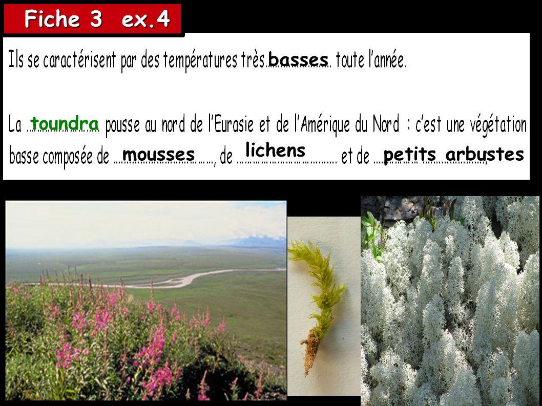 Fiche 3 ex.4 Fiche 3 ex.4 toundra basses mousses lichens petits arbustes