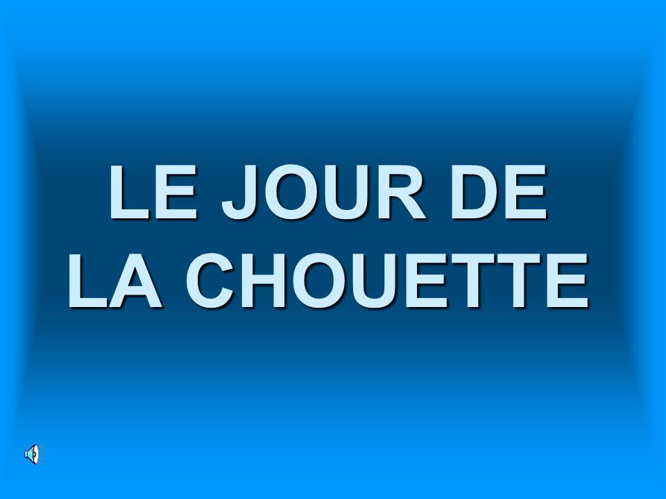 LE JOUR DE LA CHOUETTE
