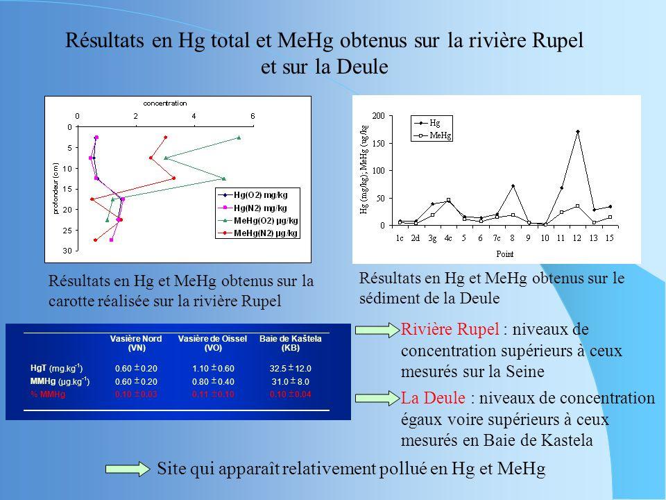 Méthodes analytiques pour la spéciation du mercure Problématique du traitement du MeHg Intercalibration entre les laboratoires de Lille et de Bruxelle