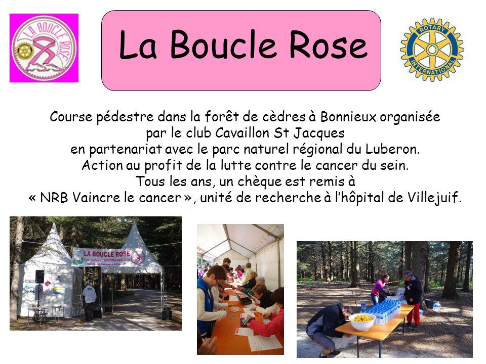 La Boucle Rose Course pédestre dans la forêt de cèdres à Bonnieux organisée par le club Cavaillon St Jacques en partenariat avec le parc naturel régional du Luberon.