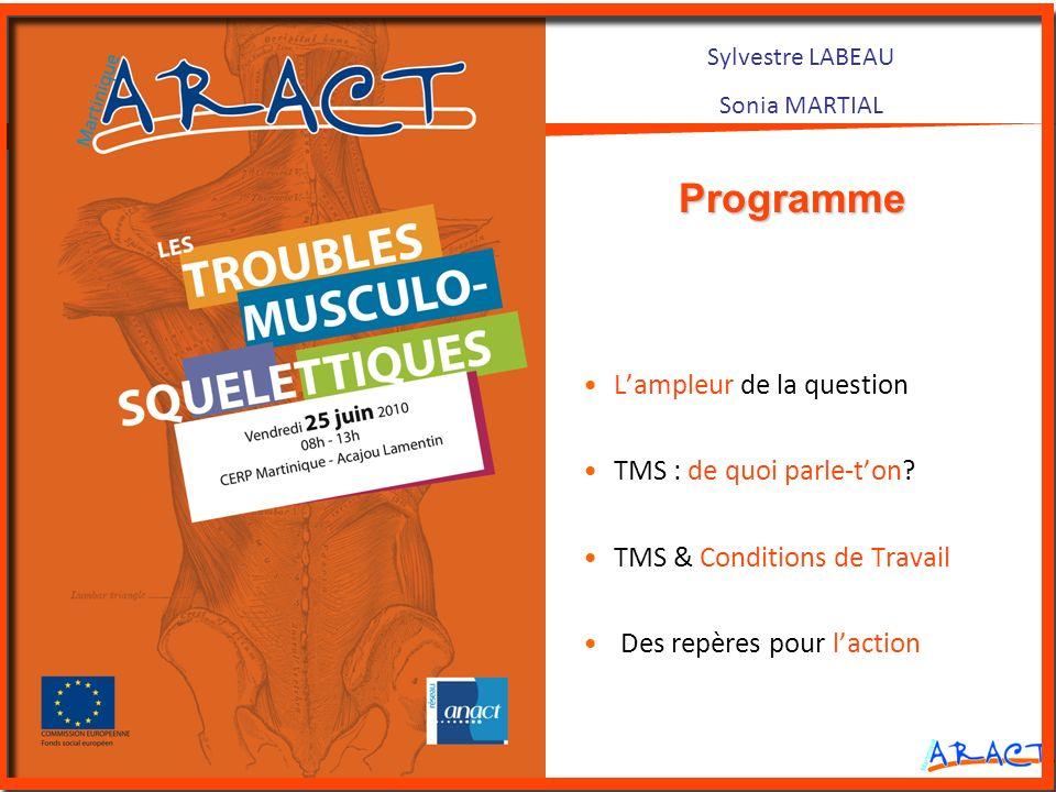 Sylvestre LABEAU Sonia MARTIAL Lampleur de la question TMS : de quoi parle-ton? TMS & Conditions de Travail Des repères pour laction Programme