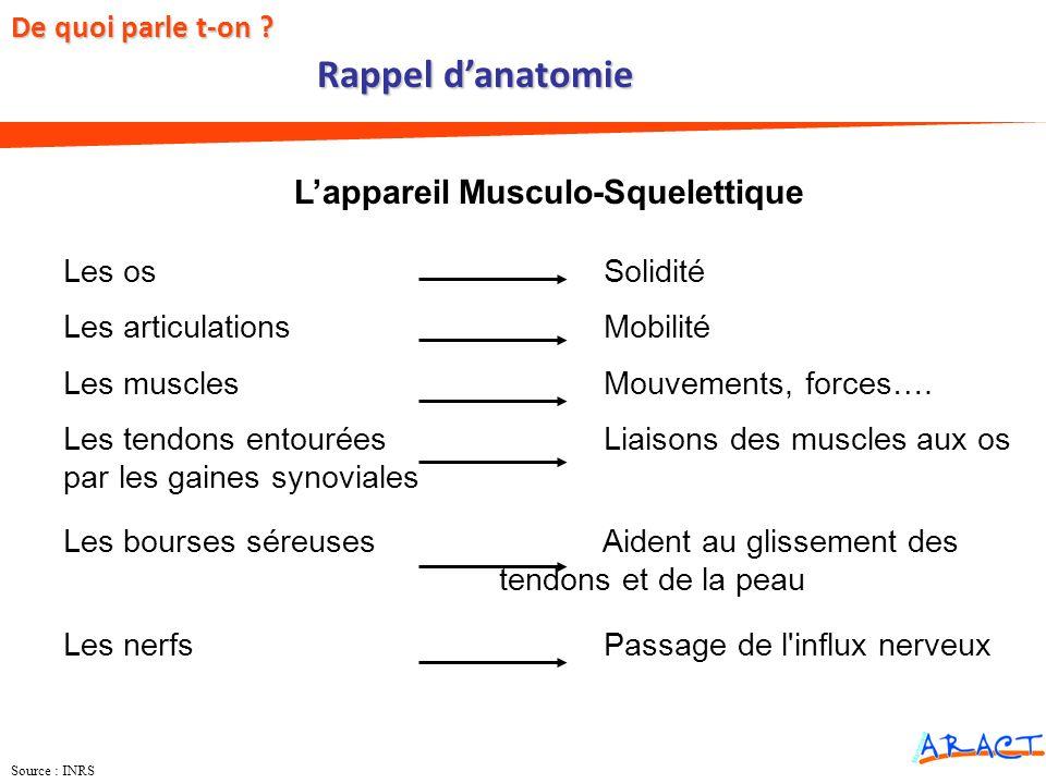 Source : INRS Lappareil Musculo-Squelettique Les os Solidité Les articulations Mobilité Les muscles Mouvements, forces…. Les tendons entourées Liaison