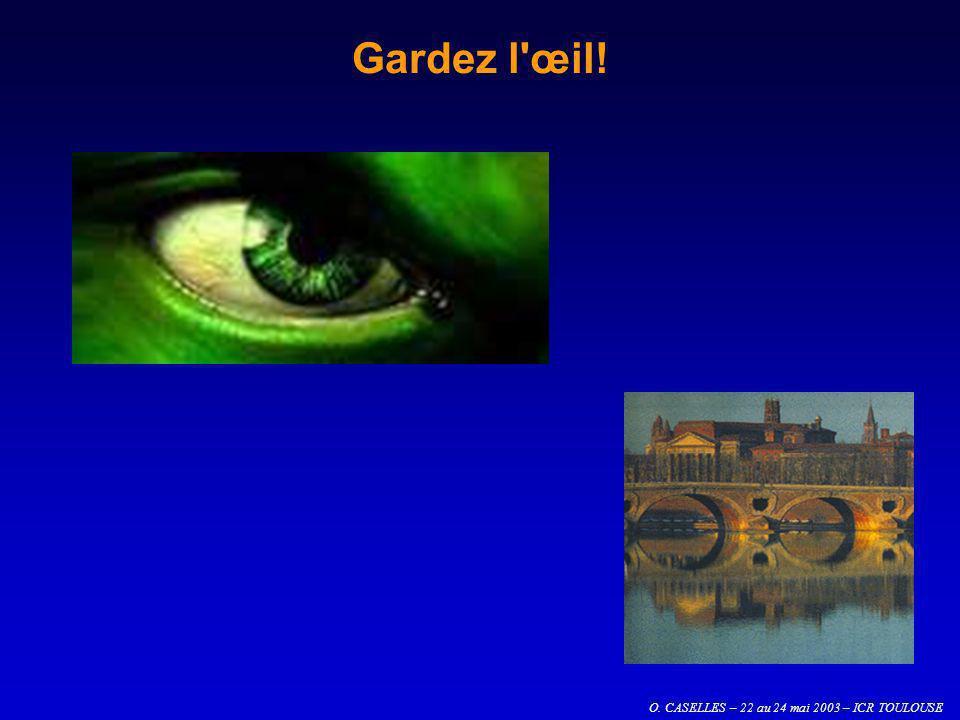 O. CASELLES – 22 au 24 mai 2003 – ICR TOULOUSE Gardez l'œil!