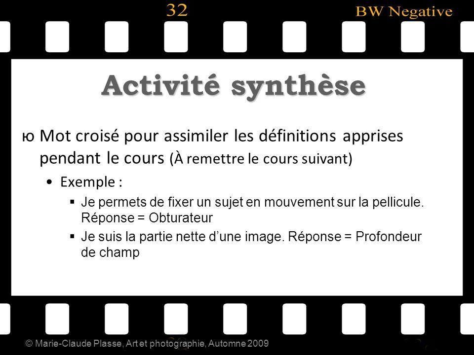 © Marie-Claude Plasse, Art et photographie, Automne 2009 Activité synthèse юMot croisé pour assimiler les définitions apprises pendant le cours (À rem