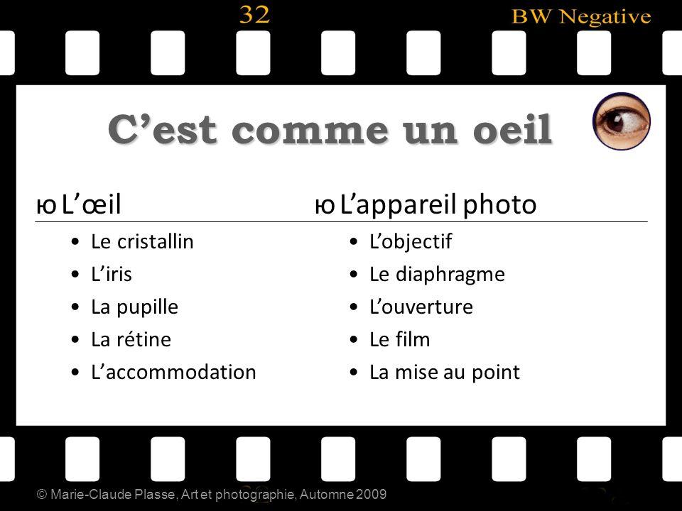 © Marie-Claude Plasse, Art et photographie, Automne 2009 Cest comme un oeil юLœil Le cristallin Liris La pupille La rétine Laccommodation юLappareil p