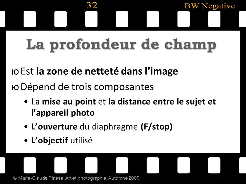 © Marie-Claude Plasse, Art et photographie, Automne 2009 La profondeur de champ юEst la zone de netteté dans limage юDépend de trois composantes La mi