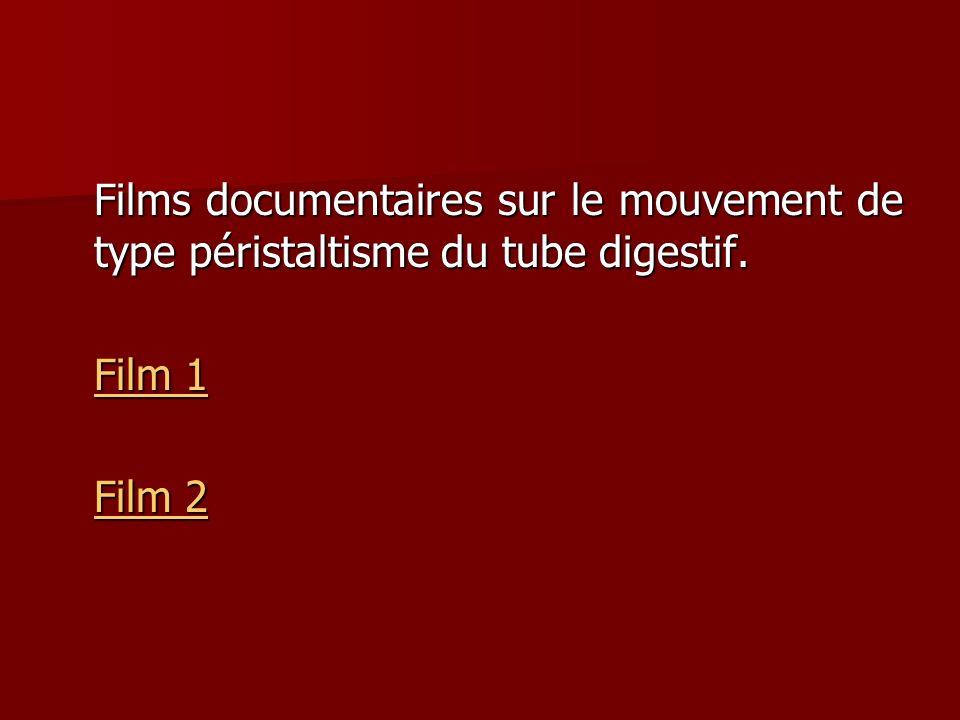 Films documentaires sur le mouvement de type péristaltisme du tube digestif. Film 1 Film 1 Film 2 Film 2