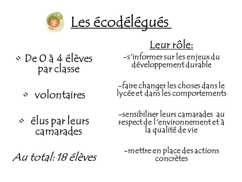 Formation Commune aux 3 sites de l EPL, Vendôme, Montoire et Blois, elle a permis de regrouper près de 40 écodélégués.
