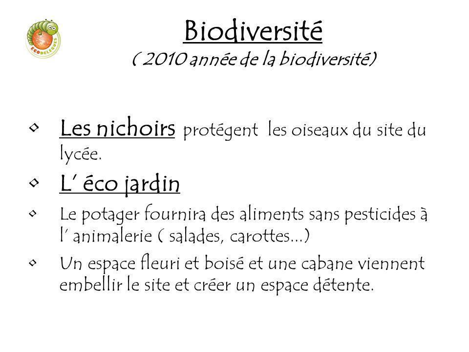 Biodiversité ( 2010 année de la biodiversité) Les nichoirs protégent les oiseaux du site du lycée. L éco jardin Le potager fournira des aliments sans