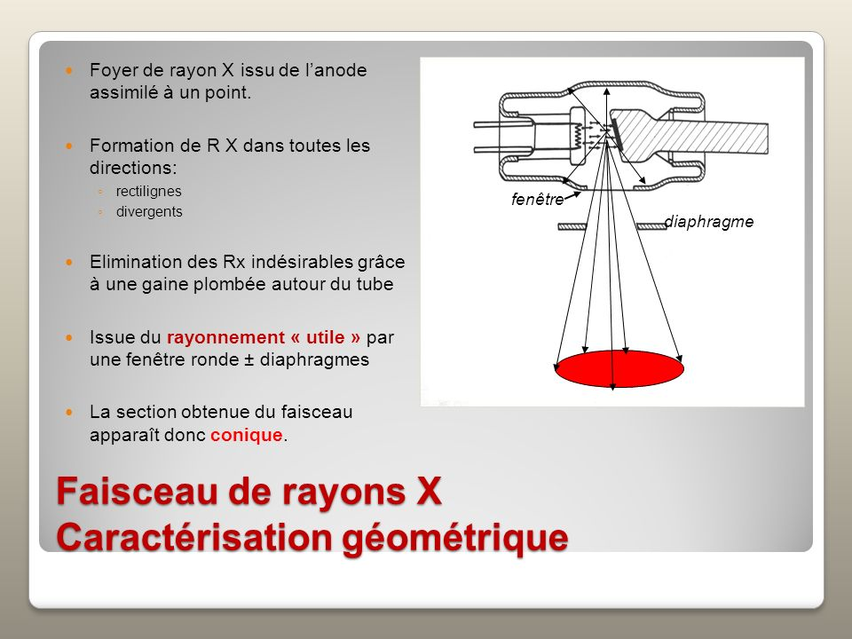 Donc, pour agrandir une image, on peut : (1) Rapprocher le tube de lobjet (2) Éloigner lobjet du récepteur (2) (1) tube objet récepteur