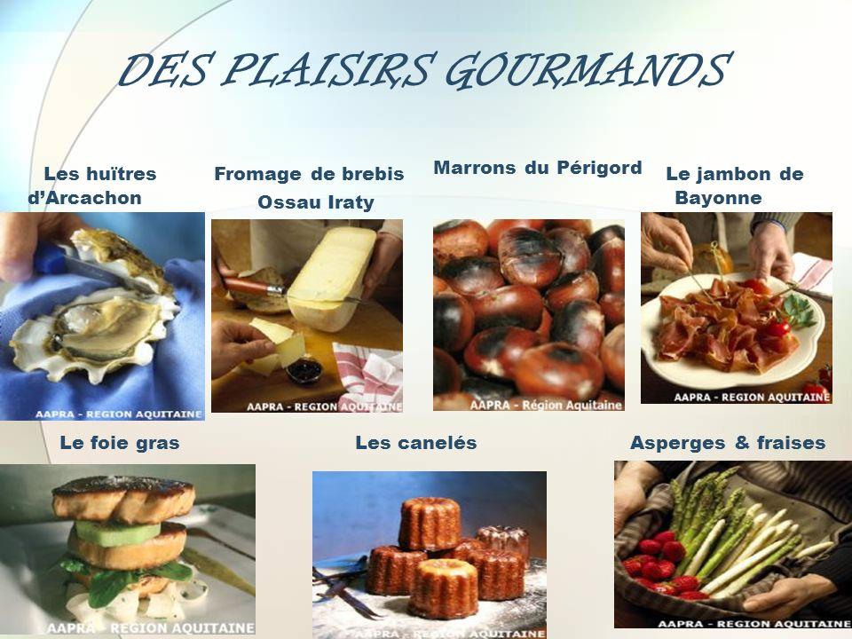 DES PLAISIRS GOURMANDS Le jambon de Bayonne Fromage de brebis Ossau Iraty Marrons du Périgord Les huïtres dArcachon Le foie grasLes canelésAsperges &