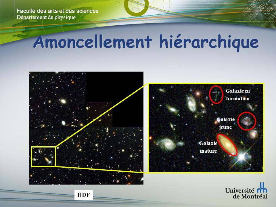 Faculté des arts et des sciences Département de physique Amoncellement hiérarchique Galaxie mature Galaxie jeune Galaxie en formation HDF