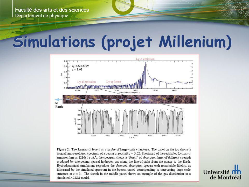 Faculté des arts et des sciences Département de physique Simulations (projet Millenium)