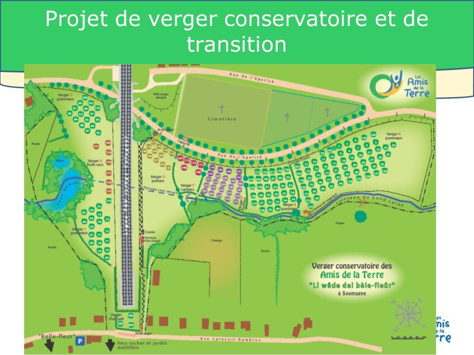 21 Les Amis de la Terre-Belgique - www.amisdelaterre.be Projet de verger conservatoire et de transition