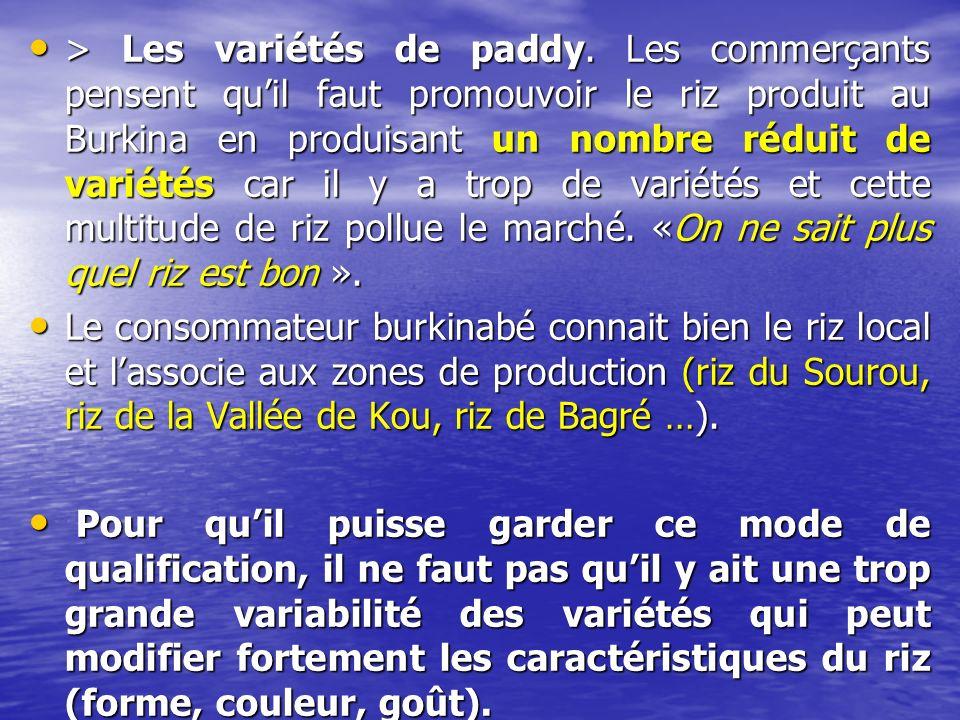 > Les variétés de paddy.