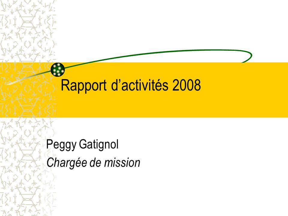 Rapport dactivités 2008 Peggy Gatignol Chargée de mission