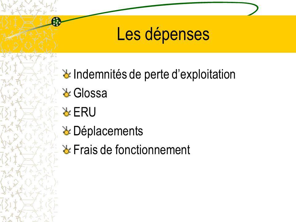 Les dépenses Indemnités de perte dexploitation Glossa ERU Déplacements Frais de fonctionnement