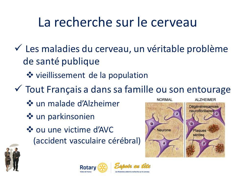 La recherche sur le cerveau Les maladies du cerveau, un véritable problème de santé publique vieillissement de la population Tout Français a dans sa famille ou son entourage un malade dAlzheimer un parkinsonien ou une victime dAVC (accident vasculaire cérébral)