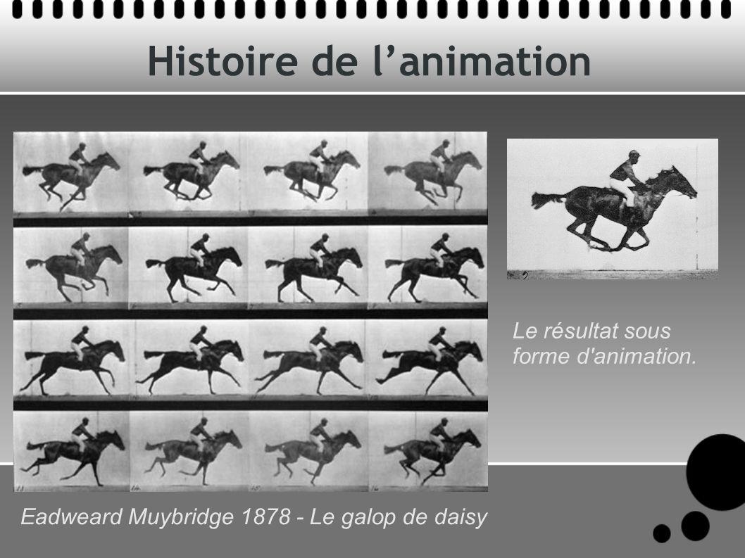 Histoire de lanimation Le résultat sous forme d'animation. Eadweard Muybridge 1878 - Le galop de daisy